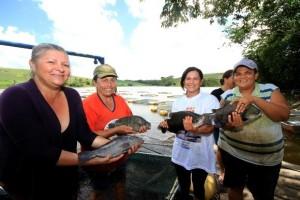 Mulheres piscicultoras da Associação de Palmeira Alta, em Penedo, com a mão na massa (no peixe): produção acima da média e comercialização garantida, gerando renda para as donas de casa (Fotos: Raul Plácido)