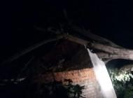 Árvore cai em residencias na parte alta de Penedo, bombeiros ficam feridos